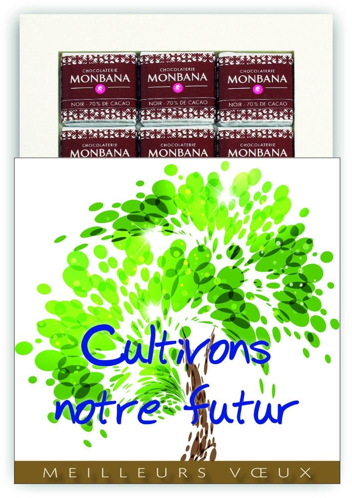 ARBRE CULTIVONS NOTRE FUTUR - CHOCOLAT