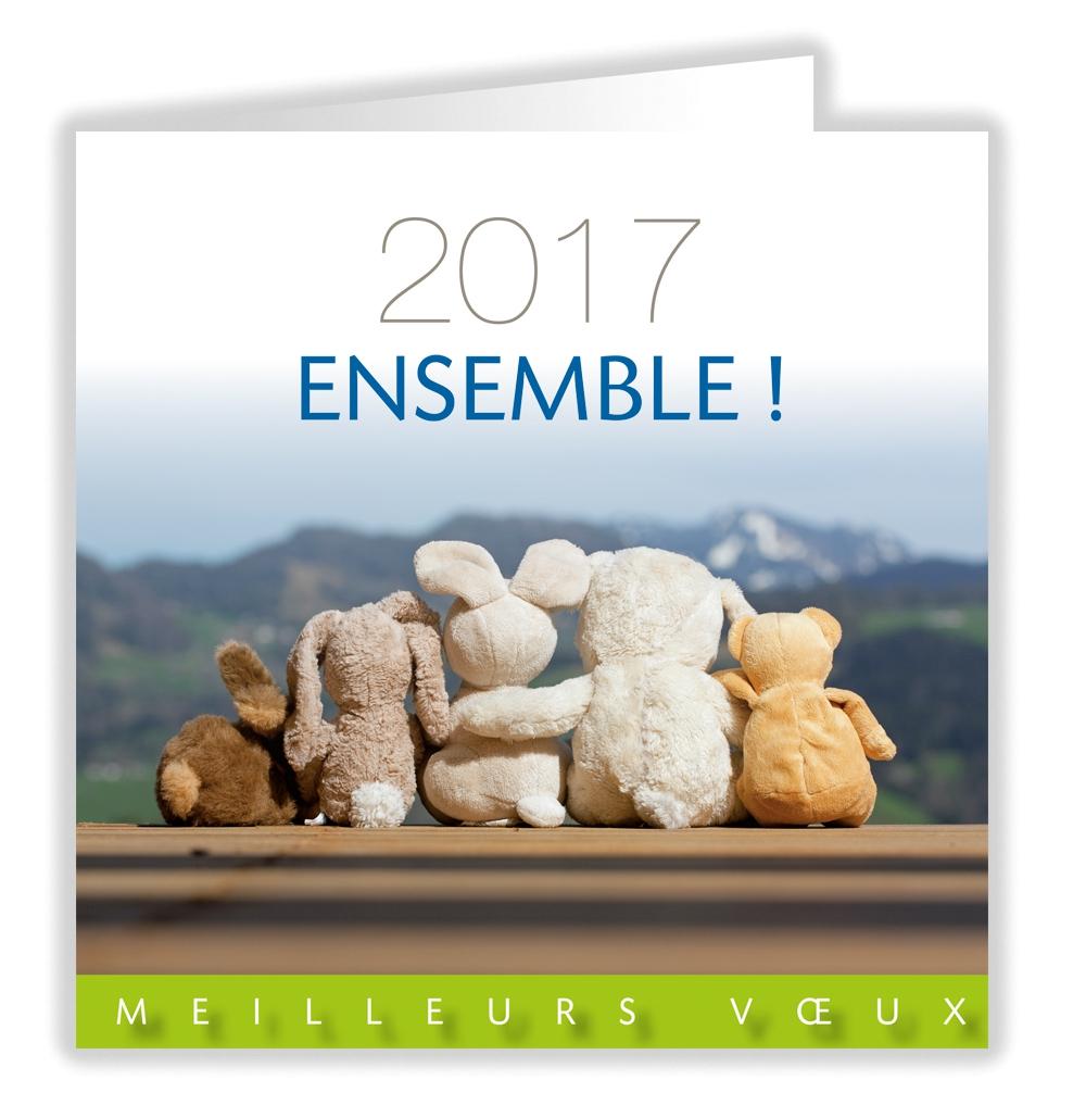 2017 ENSEMBLE